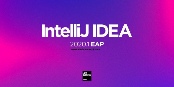 IntelliJ IDEA Ultimate 2020.2.1 Crack