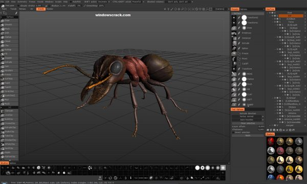 3D Coat 4.9.52 Beta With Crack Free Download [Latest]